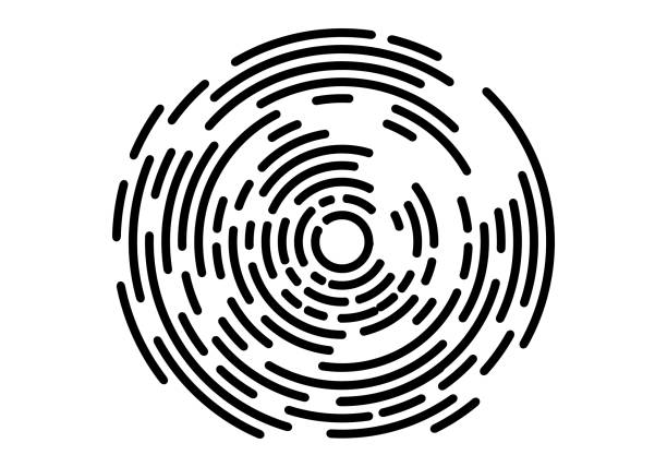 Abstract geometric vortex, Circular swirl lines, fingerprint. Vector illustration Abstract geometric vortex, Circular swirl lines, fingerprint. Vector illustration rippled stock illustrations