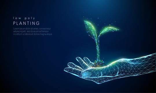 Abstract giving hand with young plant in earth. Low poly style design. Blue geometric background. Wireframe light connection structure. Modern 3d graphic concept. Isolated vector illustration.