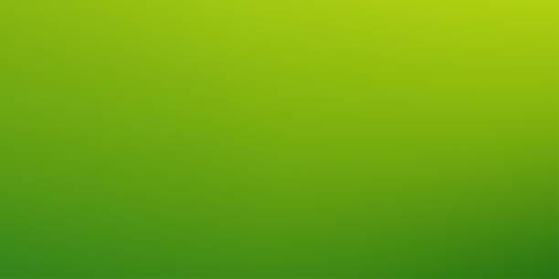 stockillustraties, clipart, cartoons en iconen met abstracte gradiënt groene vector achtergrond - green background