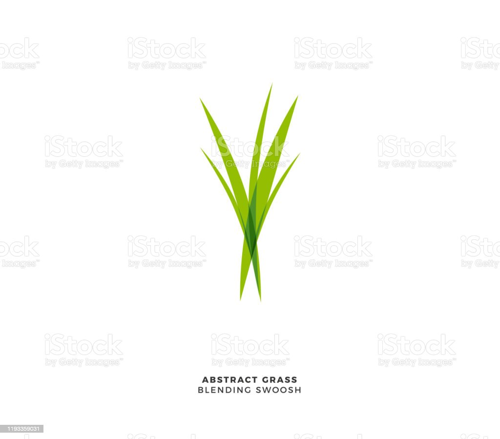 abstract grass logo isolated vector illustration stock illustration download image now istock abstract grass logo isolated vector illustration stock illustration download image now istock