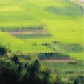 abstract green hexagon mosaic field pattern background