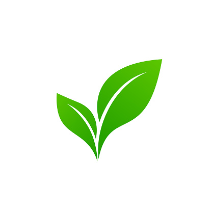 Abstract green leaf logo icon vector design. Ecology icon set. Eco icon.