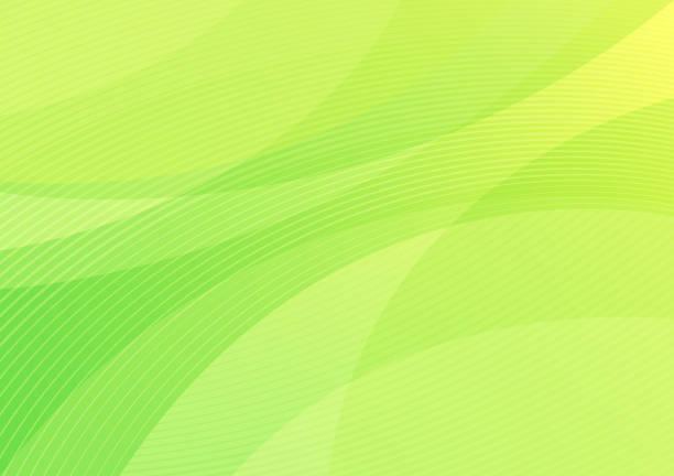 Abstract green pattern background vector art illustration