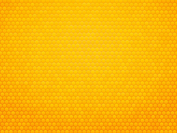 abstract honeycomb background modern style abstract honeycomb background bee borders stock illustrations
