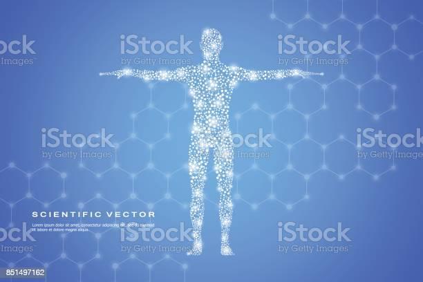 Abstract human body with molecules dna medicine science and concept vector id851497162?b=1&k=6&m=851497162&s=612x612&h=qa8p9ww9ldjwyvzwbapi4vd 3oh qdf ayr8hxj khu=