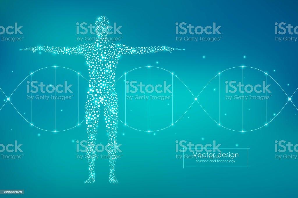 Resumo do corpo humano com moléculas de DNA. Conceito de medicina, ciência e tecnologia. Ilustração vetorial - ilustração de arte em vetor