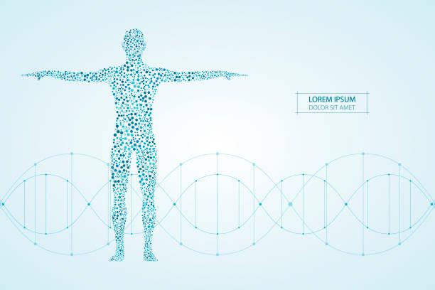 illustrazioni stock, clip art, cartoni animati e icone di tendenza di corpo umano astratto con dna di molecole. concetto di medicina, scienza e tecnologia. illustrazione vettoriale - il corpo umano