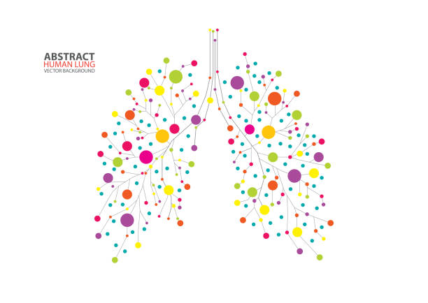 Abstract human lung vector Abstract human lung vector with dots and lines inhaling stock illustrations