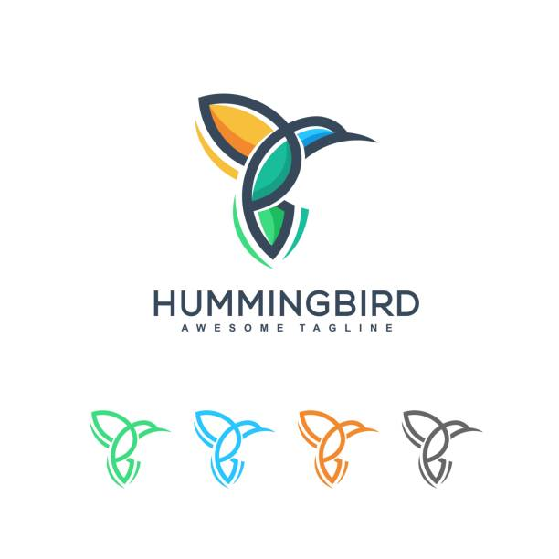 abstract hummingbird idea illustration vector design template - hummingbird stock illustrations
