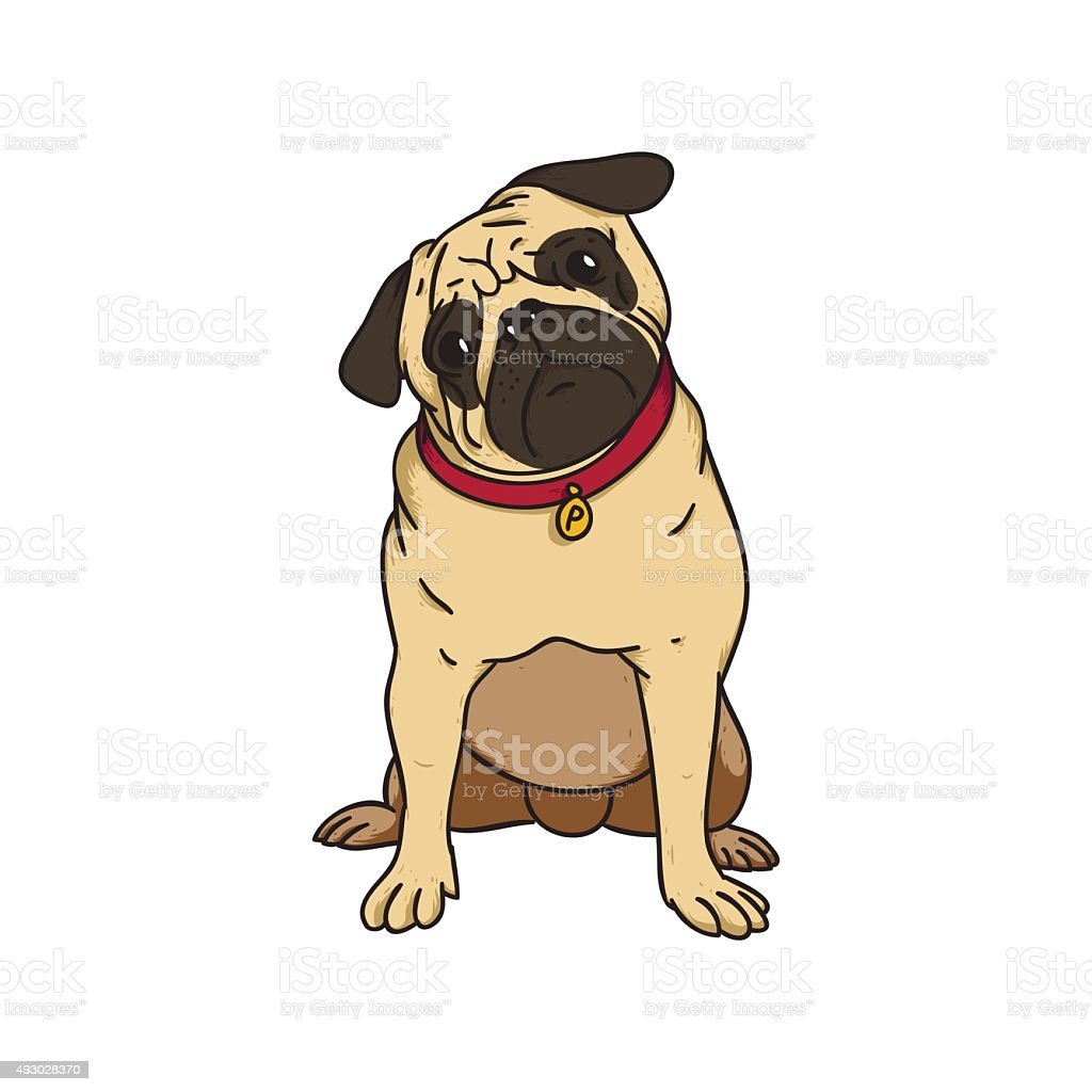 cartoon pug face