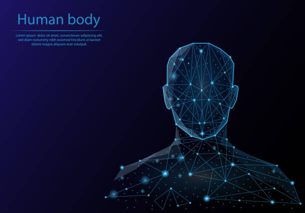 Abstract image human body in the form of a starry sky or space, consisting of points, lines, and shapes in the form of planets, stars and the universe. Low poly vector background. Abstract image human body in the form of a starry sky or space, consisting of points, lines, and shapes in the form of planets, stars and the universe. Low poly vector background. low poly modelling stock illustrations