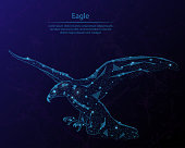 Abstract image of a eagle in the form of the constellation. Consisting of points and lines.