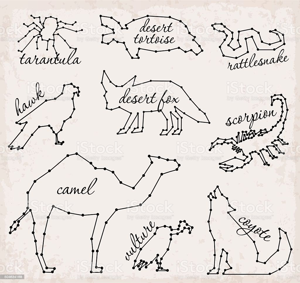 Line Drawing Of Desert Animals : Abstract line and dot desert animals set vector