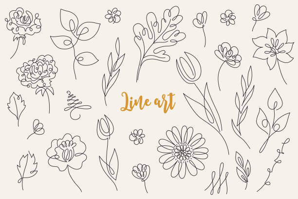 Abstract line art floral collection - tulip, rose, gerbera Abstract line art floral collection. Set of hand drawn outline trendy flowers, leaves, tulip, rose, gerbera isolated on beige background. Vector illustration flower stock illustrations