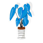 istock Abstract  lovely simple illustration of the classic anthurium 1299134901