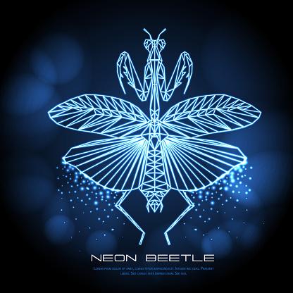 Abstract neon polygonal triangle praying mantis. Bug neon sign. Entomological vector illustration
