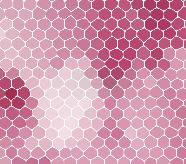 ilustraciones, imágenes clip art, dibujos animados e iconos de stock de fondo rosa abstracto con las células, no transparente - textura de pieles
