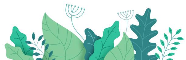 抽象植物邊框 - 大自然 幅插畫檔、美工圖案、卡通及圖標