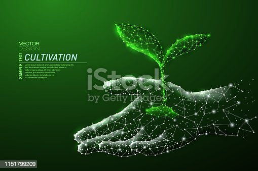 Abstract polygonal light design of growing sprout in human hand. Business mesh spheres from flying debris. Cultivation concept. Green lines,dots structure style vector 3D illustration.