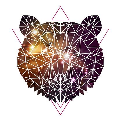 Abstract polygonal tirangle animal bear on open space background. Hipster animal illustration.