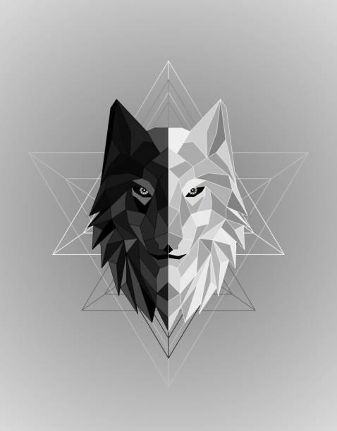 bildbanksillustrationer, clip art samt tecknat material och ikoner med abstrakt polygonal varg huvud design - varg