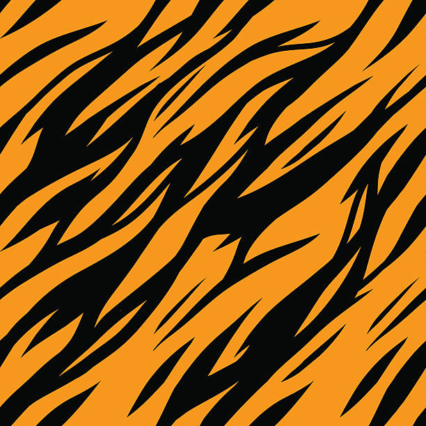 Best Tiger Print Illustrations, Royalty-Free Vector Graphics & Clip