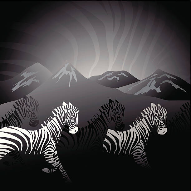 Abstract running zebras vector art illustration
