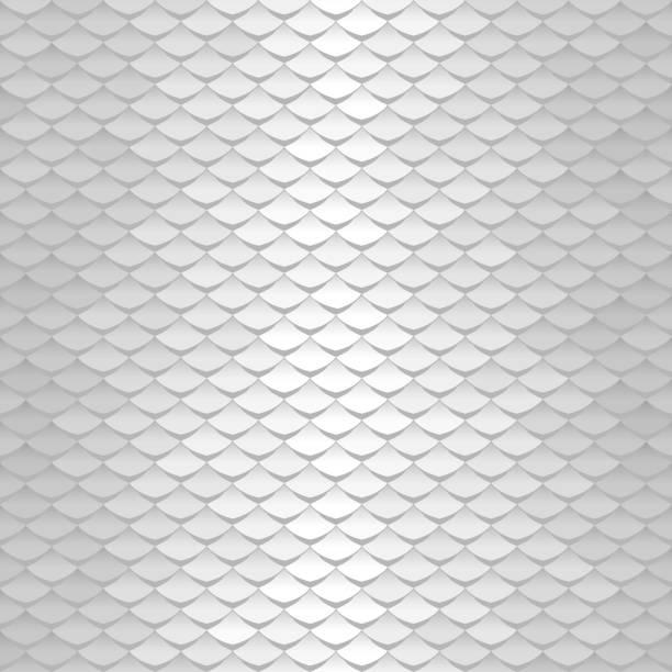 Abstraktes Skalierungsmuster. Dachziegel Hintergrund. Silber Squama Textur – Vektorgrafik