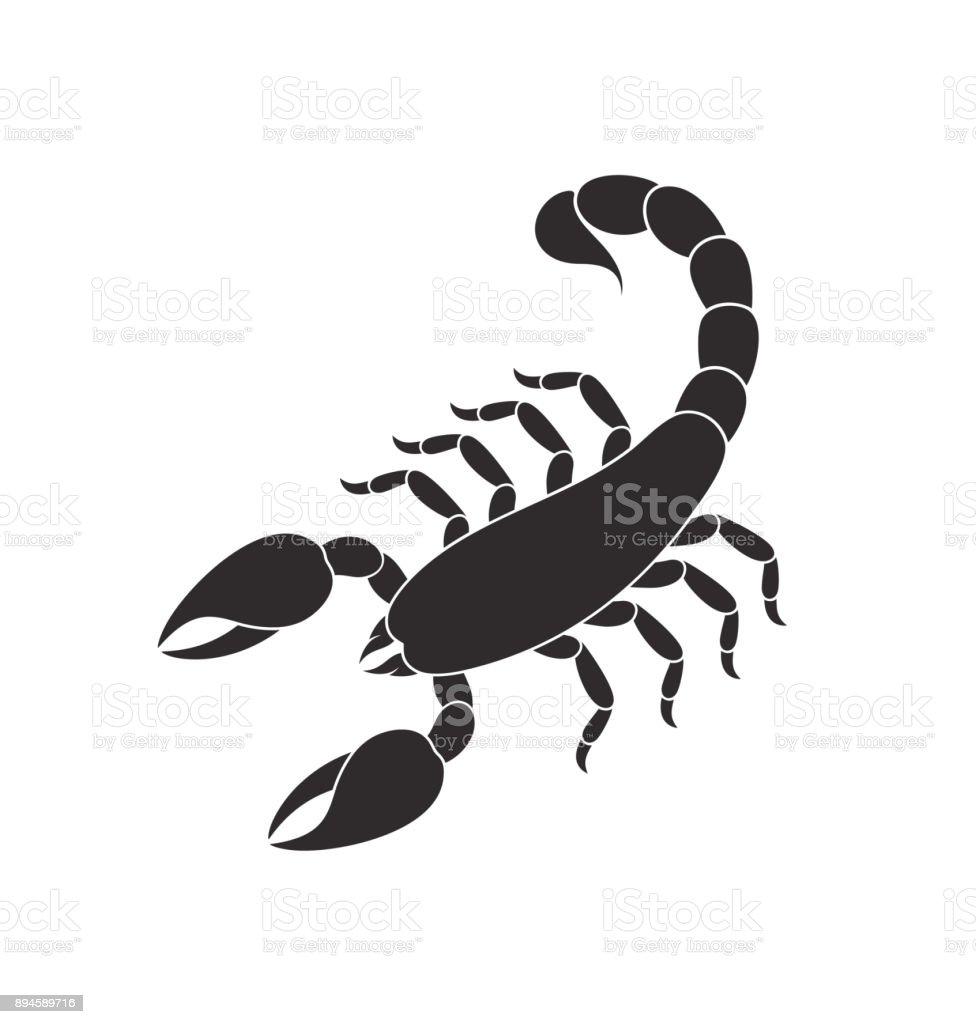 Abstract scorpion. Isolated scorpion on white background vector art illustration