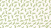 Abstract Seamless Pattern feather flower leaves.
