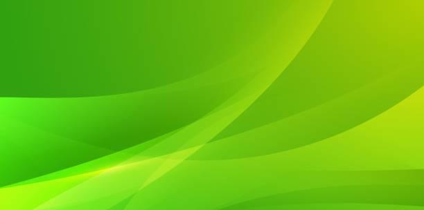 bildbanksillustrationer, clip art samt tecknat material och ikoner med abstrakt enkel modern viftande bakgrund - grön färg