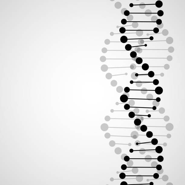 Abstract spiral of DNA vector art illustration