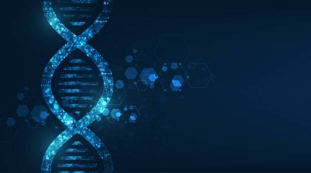 abstract technology science concept, DNA code structure with glow. abstract technology science concept, DNA code structure with glow. dna stock illustrations