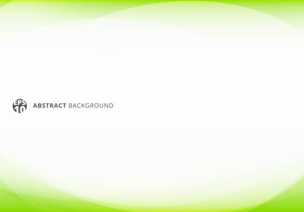 illustrazioni stock, clip art, cartoni animati e icone di tendenza di abstract template elegant header and footers green lime curve light template on white background with copy space. - template