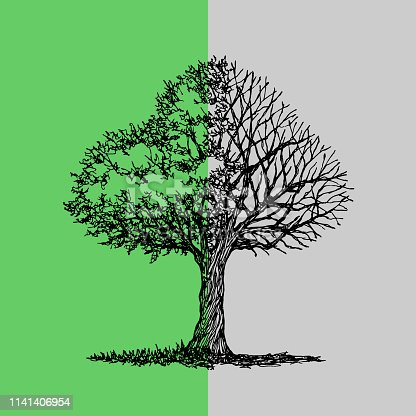 Abstract tree half green leave and black dry branch, spring autumn hand drawn vector illustration design