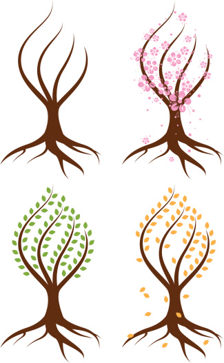 Abstract Tree in four Seasons