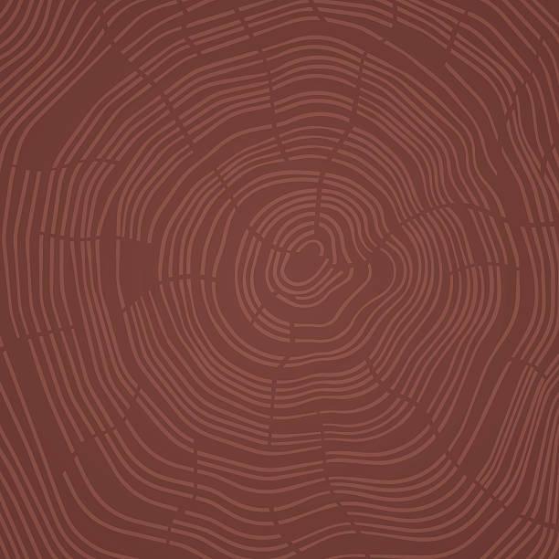 ilustrações, clipart, desenhos animados e ícones de abstract tree rings - textura de madeira