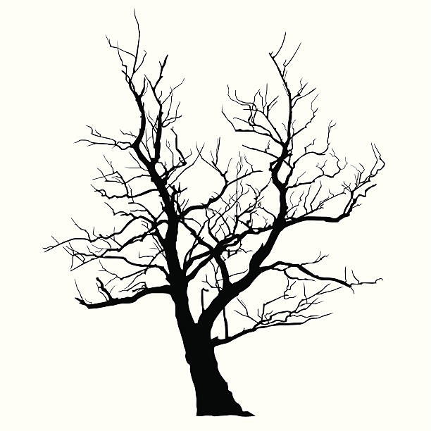 Abstract Tree Abstract Tree death stock illustrations