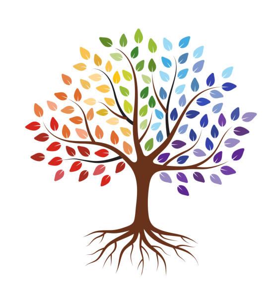 stockillustraties, clipart, cartoons en iconen met abstracte boom met wortels en kleurrijke bladeren. geïsoleerd op witte achtergrond. - wortel plantdeel