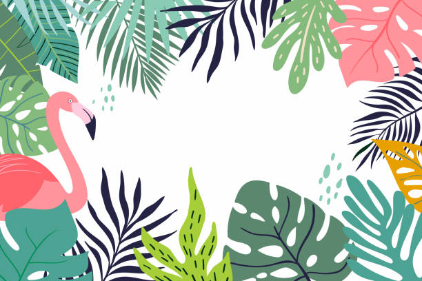 Abstract tropical banner Abstract tropical banner with decorative leaves and flamingo flamingo stock illustrations