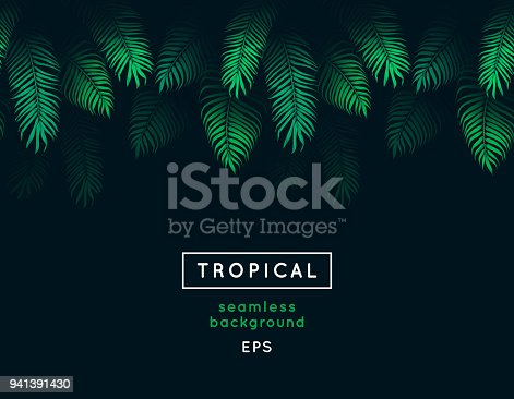 istock Abstract tropical leaf. Seamless nature background. Repeating tropic leaves pattern. Green foliage border. Summer and spring design element. Jungle. Exotic palm tree branches. Dark forest. 941391430