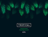 Abstract tropical leaf. Seamless nature background. Repeating tropic leaves pattern. Green foliage border. Summer and spring design element. Jungle. Exotic palm tree branches. Dark forest.