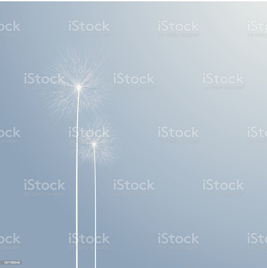 abstract two dandelions background royalty-free stock vector art