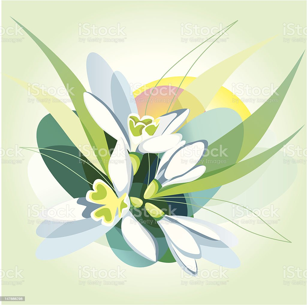Abstract vector background with snowdrops. royalty-free abstract vector background with snowdrops stock vector art & more images of anniversary card