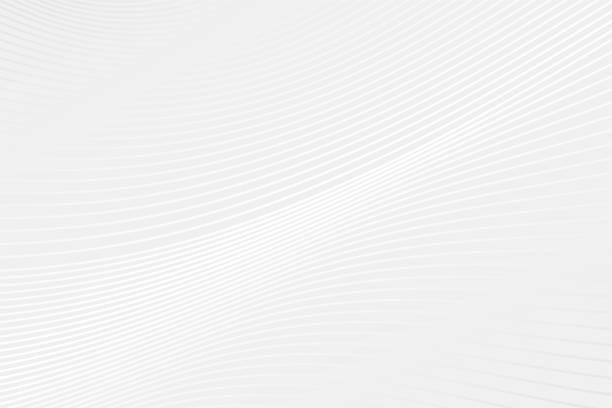 ilustraciones, imágenes clip art, dibujos animados e iconos de stock de patrón de curva vectorial abstracta. fondo de onda de gradiente gris y blanco. ilustración para diseño, presentación, muestra, decoración, web, concepto - abstract background