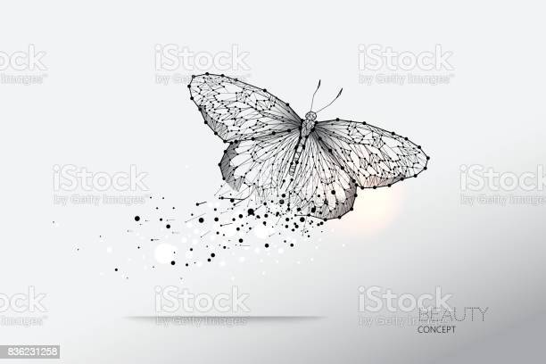 Abstract vector illustration of butterfly moving vector id836231258?b=1&k=6&m=836231258&s=612x612&h=rzr1pcpcj5zthbrie2g83r7qvvasvhymlarp2teosgy=