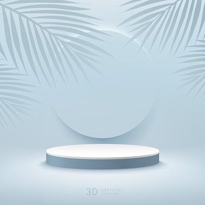 Abstract vector rendering 3d shape for cosmetic products display presentation. Modern white cylinder pedestal podium with light blue empty room and palm leaf decorate. Minimal scene studio room .