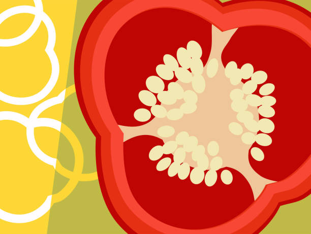 Abstract vegetable design in flat cut out style. Cross section of peppers. vector art illustration