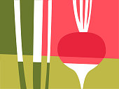 Abstract vegetable design in flat cut out style. Red and pink radish. Vector illustration.