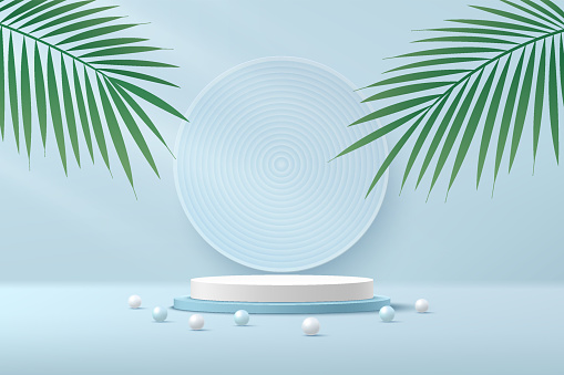 Abstract white cylinder pedestal podium. Light blue empty room with green palm leaf. blue and white sphere. Vector rendering 3d shape, Product display presentation. Pastel color minimal wall scene.